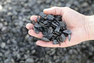 Biohiili valmistetaan harvennushakkuista saatavasta kuusesta.