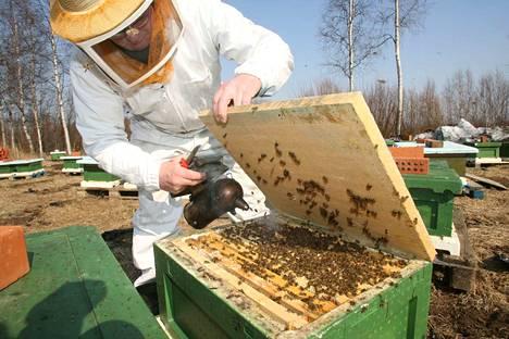 Minään vuonna hunajan tuotot eivät ole riittäneet kattamaan tuotannosta aiheutuneita kustannuksia kokonaan.