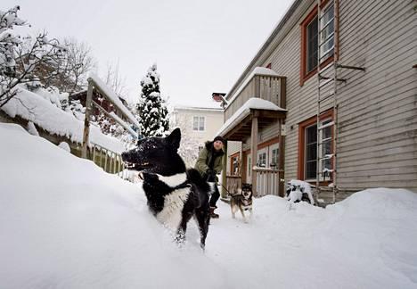 Halla ja Sissi ovat innokkaita muuttajia. Raine Kallio pitää Mäkikadun viihtyisästä ympäristöstä ja hyvästä naapuruudesta kylämäisessä Pispalassa, mutta nyt hän muuttaa kauas Pälkäneelle Aitoon kylään.