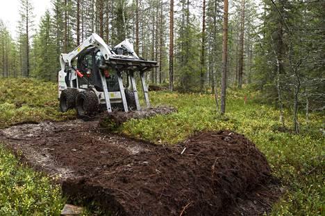 Kuntta on metsänpohjaa. Tässä on menossa kuntan nostoa Puolangalla vuonna 2017.