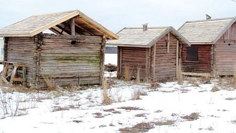 Jämsän saunakylästä löytyy saunoja, mutta kuinka monta?