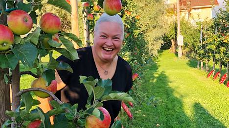Ahvenanmaalla kasvaa Keuruun, kuten muidenkin Suomen kuntien nimikko-omenapuu. Viljelijä Anna Alm kertoo, että sen sato on kypsä mehustukseen.