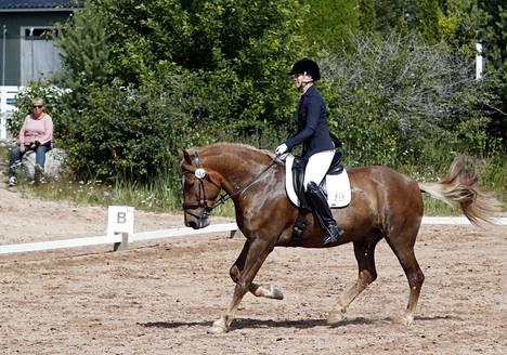Pinomäki Royality Riding Clubin Sini Huhtasalo vei Veli Leijonamielen hevosen ensimmäisen isoon kilpailuun. Kilpailussa Veli Leijonamieli pysyi aitojen sisäpuolella. Tuloksena oli sija 16 luokassa 1.