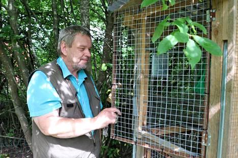 Eläinsuojeluneuvoja Petri Grönroos on rakentanut oraville pihahäkin.