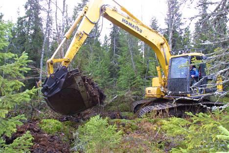 Metsien ja soiden ojitus kuormitta vesistöjä roimasti enemmän kuin on oletettu.