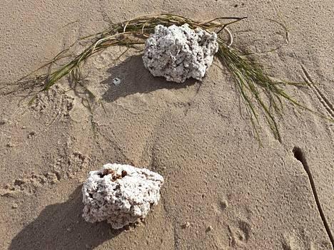 Tuuli kuljetti Yyterin rantaan tahmeita kökkäreitä.