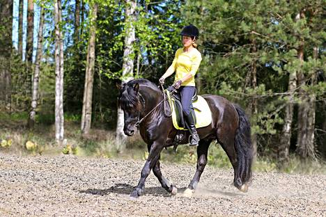 A.T. Musta-Ritari selässään omistajansa Jaana Tuominen. Ritari on pääasiassa Tuomisen harrastehevonen.