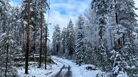Sää oli Pohjois-Nokialla Alinenjärven lähellä lauantaina iltapäivällä talvinen.