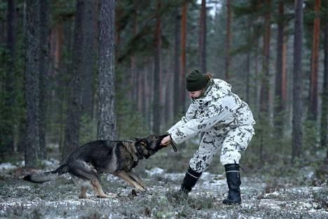 Kesti aikansa, ennen kuin Källin ja jääkäri Emmi Heinon yhteistoiminta ryhtyi sujumaan. Kun koira rupesi kommunikoimaan ohjaajansa kanssa, yhteiselo on sujunut ongelmitta.