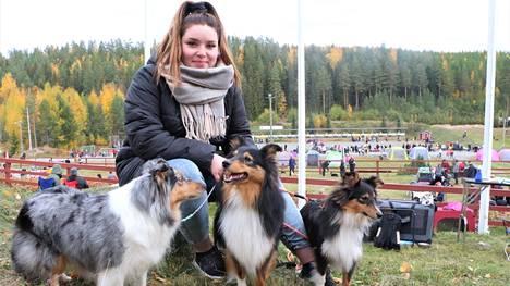 Hinni Ekari tuli Keuruun koiranäyttelyyn Jyväskylästä. Shetlanninlammaskoirat, emä Halla ja sen salonkikoiranakin toimineet urospennut Reetu ja Unto nauttivat toisten koirien seurasta ja tapahtuman vilinästä.