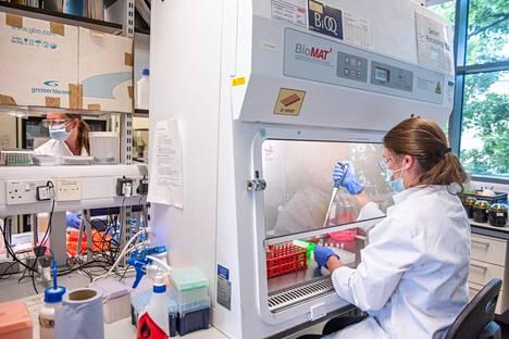 Kuva on Oxfordin yliopistolta, jossa kehitetään koronarokotetta yhdessä lääkeyhtiö AstraZenecan kanssa.