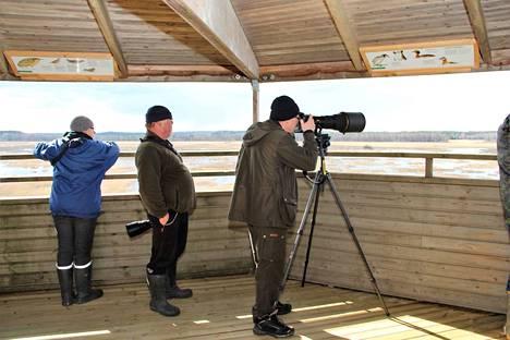 Kärjenkallion lintutornissa tunnistetaan lauantaina lintulajeja Tornien taisto -kisassa.