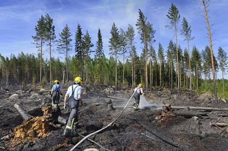 Ruohikkopalojen riski pienenee kaiketi lähiaikoina, mutta metsäpalojen riski voi kasvaa kuivilla keleillä nopeastikin. Kuvassa sammutetaan Laviassa toukokuussa 2013 riehunutta metsäpaloa.