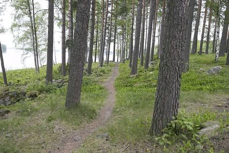 Näissä Petäyksen maisemissa Vanajaveden rannalla Heinrich Himmlerin kerrotaan heilastelleen rotuihanteitaan vastanneen suomalaisneidon kanssa kesällä 1942. Niemennokassa kulkevasta polusta käytetään yhä tänä päivänä nimeä Himmlerin polku.