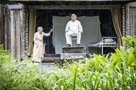 Sillanpää-oopperan päärooleissa nähdään klassisen musiikin ammattilaisia. vanhempaa Taataa esittää Sauli Tiilikainen. Siikrin roolissa laulaa sopraano Helena Juntunen.