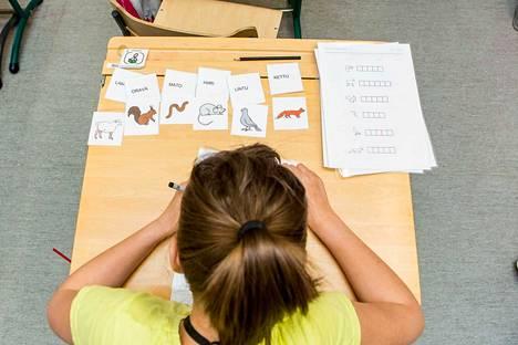 Panelian koulun puukouluun tarvittaisiin tiloja myös oppilashuollolle ja erityisopetukselle. Arkistokuva.
