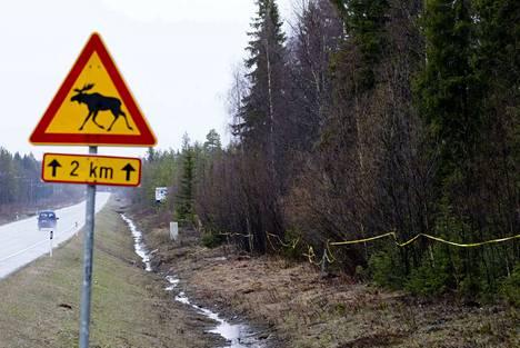 Hirvinauhat varoittavat autoilijaa ja hidastavat hirveä.