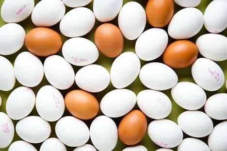 Muna on ilmiömäinen pakkaus, joka säilyttää sisuksensa hyvänä jopa kuukausia päiväyksen mentyä. Päiväysvanhat munat kannattaa aina varmuuden vuoksi rikkoa yksitellen erilliseen mukiin.
