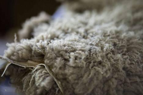 Kurjen tila myy muun muassa lampaantaljoja ja muita lampaanvillasta valmistettuja tuotteita.