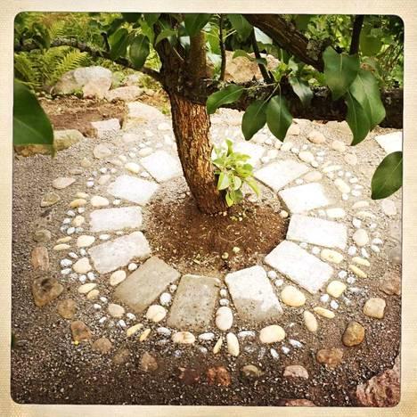 Kivetys on päärynäpuun juurella.
