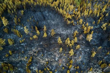 Viime vuoden toukokuussa Kangasalla ja Lempäälässä paloi paljon metsää. Viime vuoden toukokuu ei ollut yhtä kuiva kuin nyt käynnissä oleva toukokuu. Pelastuslaitos kehottaa ihmisiä olemaan äärimmäisen varovainen tulen kanssa maastossa.