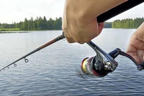Anna antti ahvenia, pekka pieniä kaloja - kalastonhoitomaksun maksettuaan voi kalastaa yhdellä vavalla lähes koko maassa.