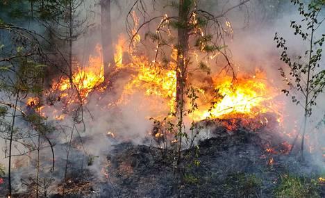 Avotulen tekeminen on kiellettyä myös leirintäalueilla ja grillattaessa, muistuttaa Sisä-Suomen poliisi.