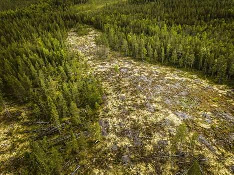 Kansalaisaloitteen menestys on selkeä viesti istuvalle eduskunnalle tulevia eduskuntavaaleja ajatellen, Suomen luonnonsuojeluliitto toteaa tiedotteessaan.