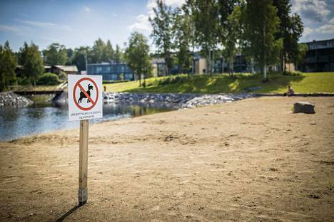 Kankaanpään kaupunginhallituksen päätöksellä koiria on lupa uittaa Ruokojärven vanhalla uimarannalla.