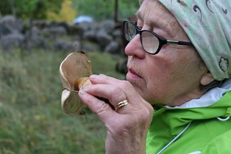 Sirkka Riitahuhta toteaa, että kannattaa nuuhkaista miltä sieni tuoksuu. Tuntemattomia sieniä ei kannata silti poimia.