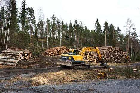 Tänä vuonna hakataan ennätysmäärä metsää, runsaat 70 miljoonaa kuutiota.