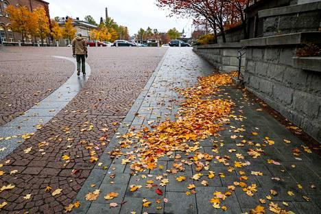 Tampereen syksy on tänä vuonna harvinaisen värikäs.