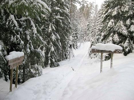 Viime tammikuussa Mäntänvuoressa oli runsaasti lunta.