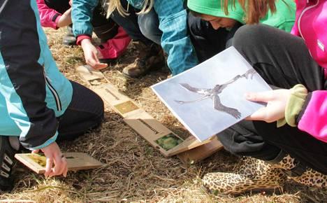 Pihlajaveden ala-astetta voisi kyläyhdistyksen ja koulun johtokunnan kannanoton mukaan kehittää entistä enemmän kohti metsää, luontoa ja ilmiöpohjaista opetusta.