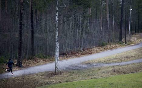 Lumettomia talvia on ollut toki ennenkin. Tämä kuva on Tampereelta tammikuulta 2014.