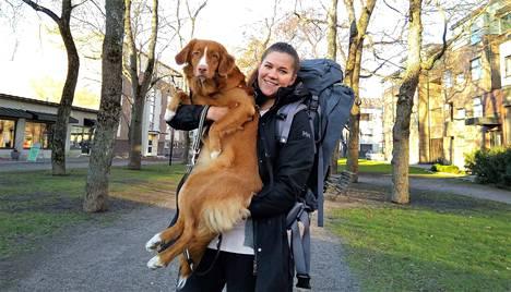 Katariina Myllyoja haaveilee arktisesta seikkailumatkasta, josta 300 kilometriä kuljetaan koiravaljakon kyydissä. Seitsemän kuukauden ikäinen novascotiannoutajan pentu Ariel jäisi kuitenkin kotiin Naantaliin.