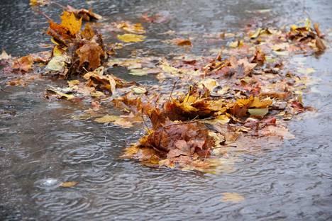 Pohjavesitilanteen normalisoituminen vaatisi rankkoja vesisateita.