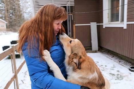 Tarja Leino tietää, että Fluffy on porukan ahkerin suukottelija. Fluffy luulee olevansa lauman pomo. Leino puolestaan arvelee, että koira on saanut kingigeeninsä jo koiratarhassa.