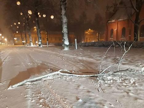 Myrsky riepotteli puiden oksia teille ja kaduille. Kuva on Tampereen Kuninkaankadulta Finlaysonin kirkon vierestä.