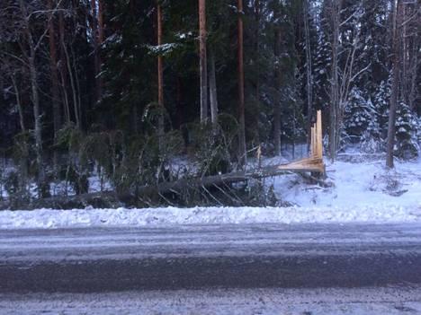 Myrsky on aiheuttanut useita metsätuhoja eri puolilla Pirkanmaata.