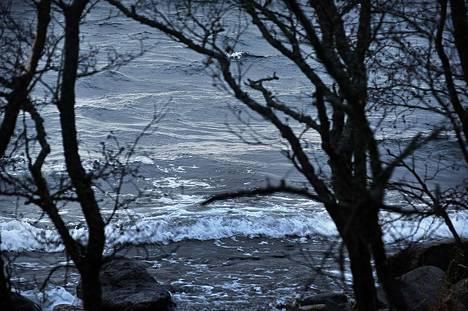 Sulalla talvimerellä oli ratkaiseva rooli Aapeli-myrskyn tuulien yltymisessä ennätyksellisiksi.
