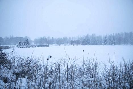 Lauri Kilkku ja Anna Kyhä-Mantere päättivät keskiviikkoaamuna, ettei tapahtumaa voida järjestää Kirjurinluodon Hanhipuiston parkkialueella 5.–6. heinäkuuta.