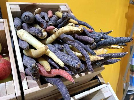 Tällaisia porkkanat olivat ennen kuin niistä jalostettiin oransseja ja suoria. Näitä luomuporkkanoita myytiin Berliinissä tammikuun lopussa jättimäisillä Grüne Woche -ruokamessuilla.