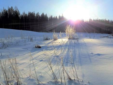 Kunnanjohtaja Viveka Laine on erityisen tykästynyt Katselman ja Haapakeitaan luontoon.