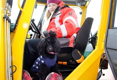 Tiia Miettinen on aurannut lumia vuodesta 2013 lähtien. Tänä talvena hänellä on mukana apukuski Pluto.