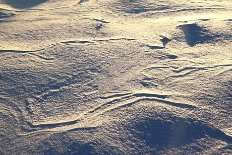 Ilmatieteen laitoksen mukaan lumensyvyyden mittauspaikat on valittu niin, ettei lumi pääse kinostumaan. Arkistokuva.