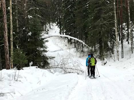 Talvisessa luonnossa retkeilyyn kannattaa varustautua kunnolla, muistuttaa Vapaaehtoinen pelastuspalvelu.