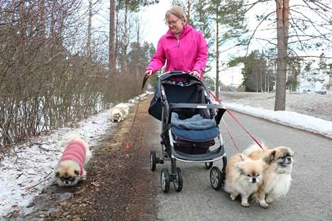 Anu Koiranen iloitsee, että koirat ovat tuoneet hänen elämäänsä paljon iloa.