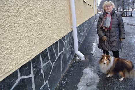 Tässä Satakunnankadun ja Sotkankadun risteyksessä on nyt niin paljon lasinsiruja, että Nikke-koiran tassut ovat vaarassa, murehtii Tuija Heikkilä.