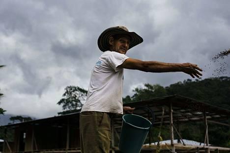 65-vuotias Javier García eli Tito taisteli vuosikymmeniä FARC-sissiliikkeen riveissä, mutta asuu nyt San José Leónin kylässä ja pitää huolta kylän kalatarhasta.